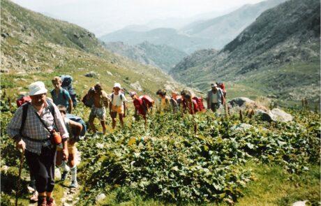 Apinismo Giovanile